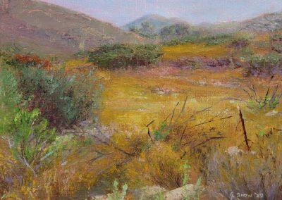Goodan Ranch Field