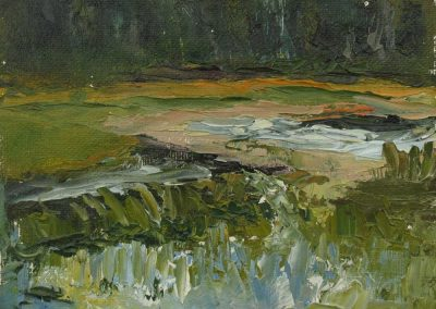 Grassy Lake No. 2, 2015