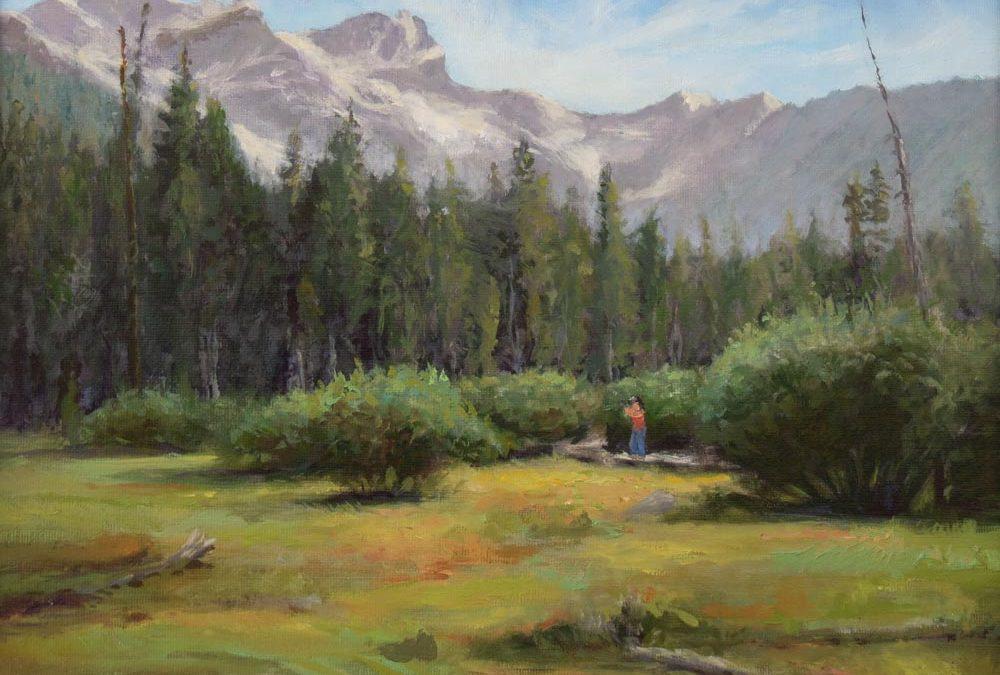 Sierra Buttes Meadow